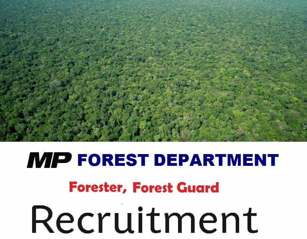 MPPSC Forest Service Exam 2019 Eligibility