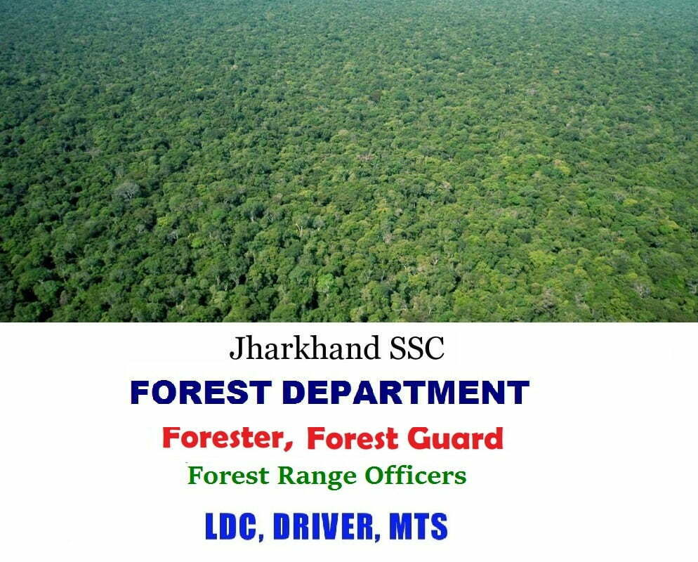 JSSC Forest Department Recruitment 2019 Eligibility