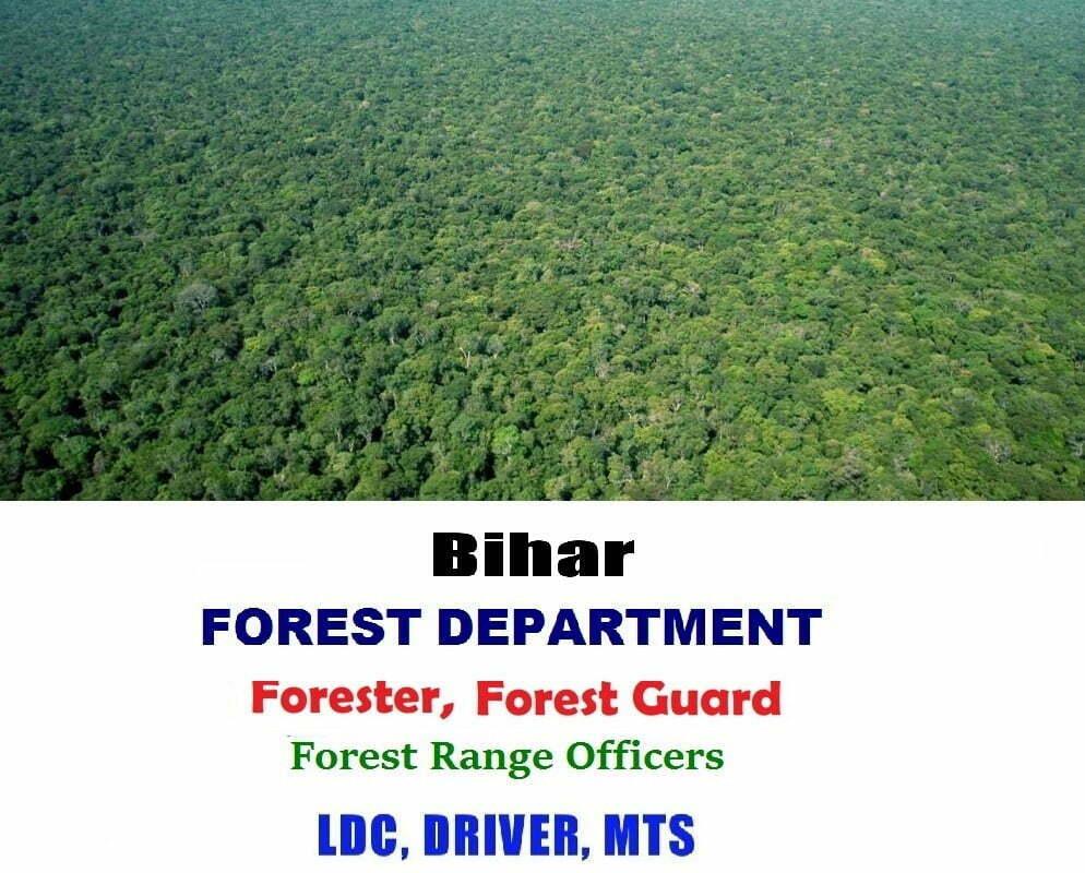 Bihar Forest Department Recruitment 2019 Eligibility, Bihar SSC Forest Guard Recruitment 2019 Apply Online